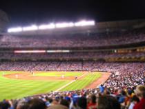 Baseball Stadium Miniature Set